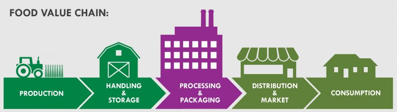 Food value chain: processing and packaging